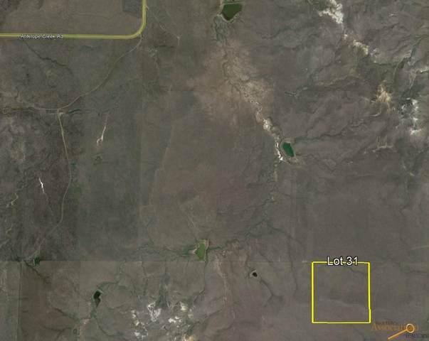 tbd Antelope Creek Rd, Caputa, SD 57725 (MLS #156304) :: Dupont Real Estate Inc.