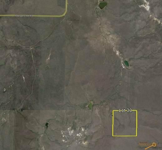 tbd Antelope Creek Rd, Caputa, SD 57725 (MLS #156305) :: Dupont Real Estate Inc.