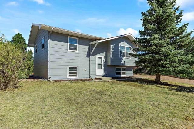 628 Lion Dr, Rapid City, SD 57701 (MLS #156307) :: Dupont Real Estate Inc.