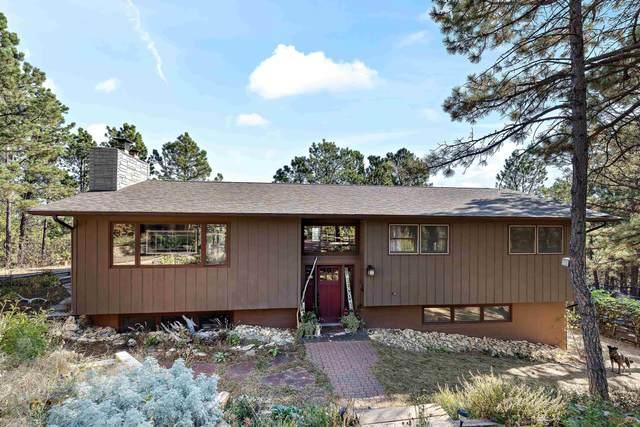 1123 Wildlife Rd, Rapid City, SD 57702 (MLS #156436) :: Heidrich Real Estate Team