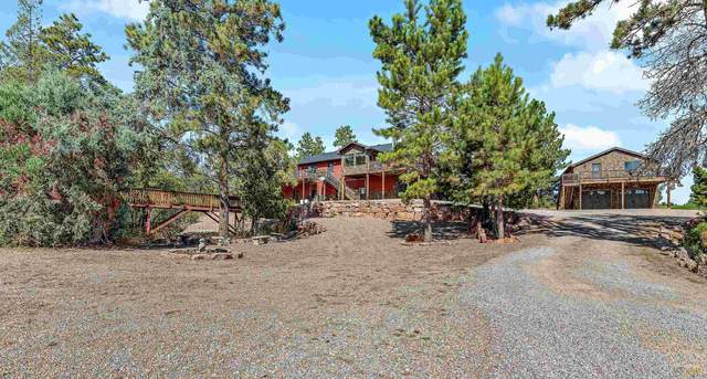 101 Finch Ct, Hot Springs, SD 57747 (MLS #156439) :: Dupont Real Estate Inc.