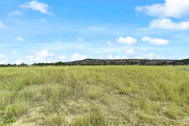 TBD Meadowlark Dr, Hot Springs, SD 57747 (MLS #156446) :: Christians Team Real Estate, Inc.