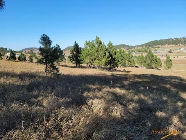 TBD Pleasant Valley Rd, Sturgis, SD 57785 (MLS #156617) :: Heidrich Real Estate Team