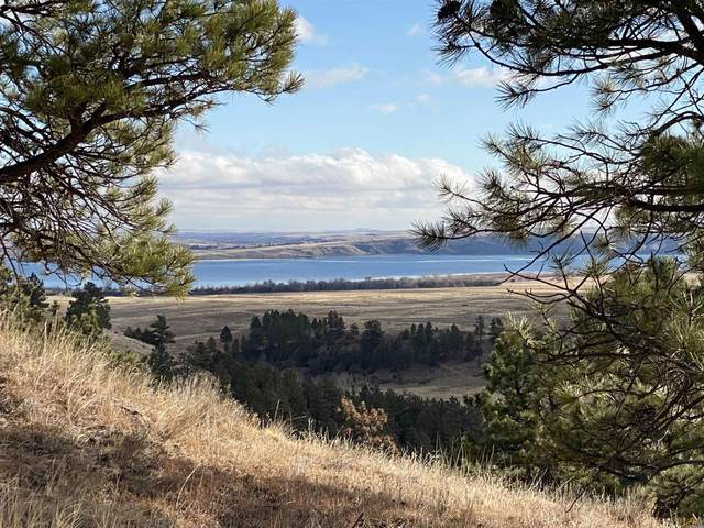 tract 1 Sheps Canyon, Hot Springs, SD 57747 (MLS #156703) :: Christians Team Real Estate, Inc.