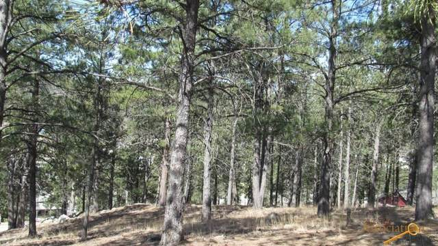 TBD Pine Mt Ave, Hill City, SD 57745 (MLS #156720) :: Dupont Real Estate Inc.