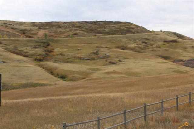TBD Ambush Ranch Rd, Rapid City, SD 57702 (MLS #136542) :: Christians Team Real Estate, Inc.