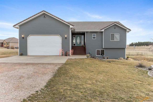 11225 Quaal Rd, Black Hawk, SD 57718 (MLS #137623) :: Christians Team Real Estate, Inc.