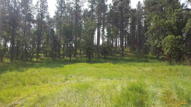 23645 Wilderness Canyon Rd, Rapid City, SD 57702 (MLS #138409) :: Christians Team Real Estate, Inc.