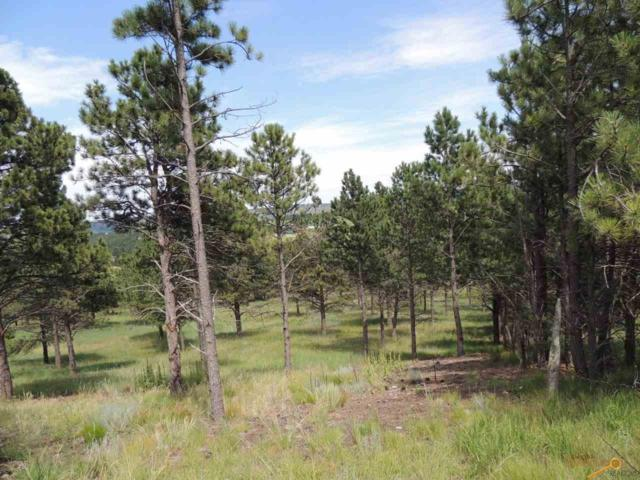 Lot U Ridgetop Rd, Hermosa, SD 57744 (MLS #138725) :: Christians Team Real Estate, Inc.