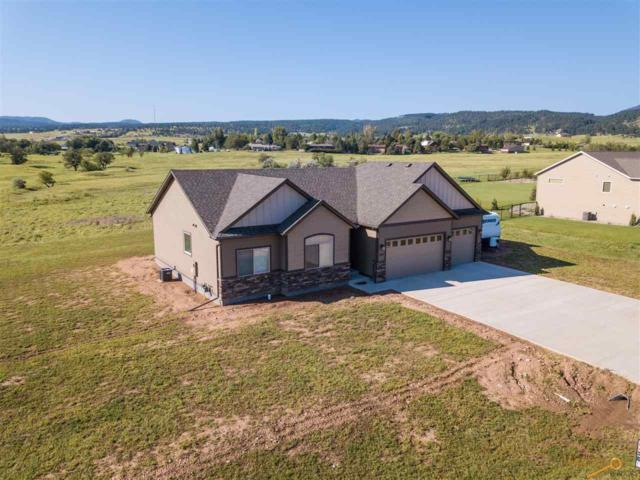 2271 Tumble Weed Tr, Spearfish, SD 57783 (MLS #140110) :: Christians Team Real Estate, Inc.