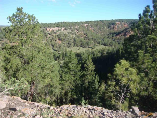 Lot 2 Red Canyon Rd, Hot Springs, SD 57747 (MLS #140909) :: Christians Team Real Estate, Inc.