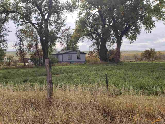 15579 Antelope Creek Rd, Rapid City, SD 57703 (MLS #141172) :: Christians Team Real Estate, Inc.