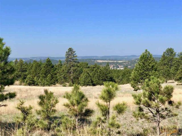 TBD Elk Run Rd, Custer, SD 57730 (MLS #142378) :: Christians Team Real Estate, Inc.
