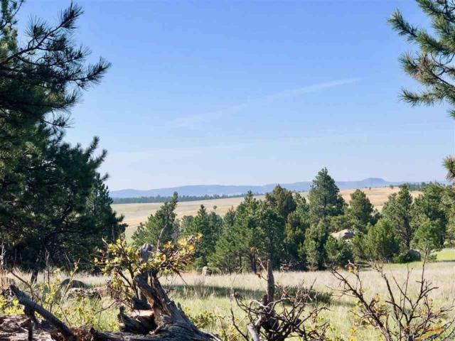 26675 Stage Stop Rd, Custer, SD 57730 (MLS #142379) :: Christians Team Real Estate, Inc.