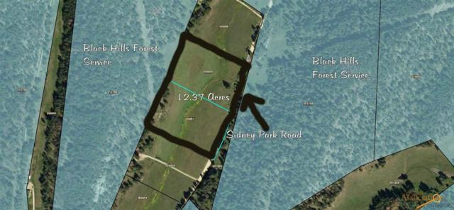 TBD Sidney Park Rd, Custer, SD 57730 (MLS #142598) :: Dupont Real Estate Inc.