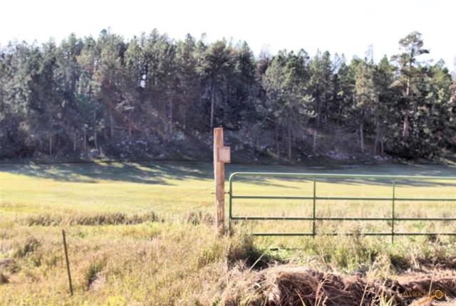 TBD lots 5,6 Sidney Park Rd, Custer, SD 57730 (MLS #142599) :: Dupont Real Estate Inc.
