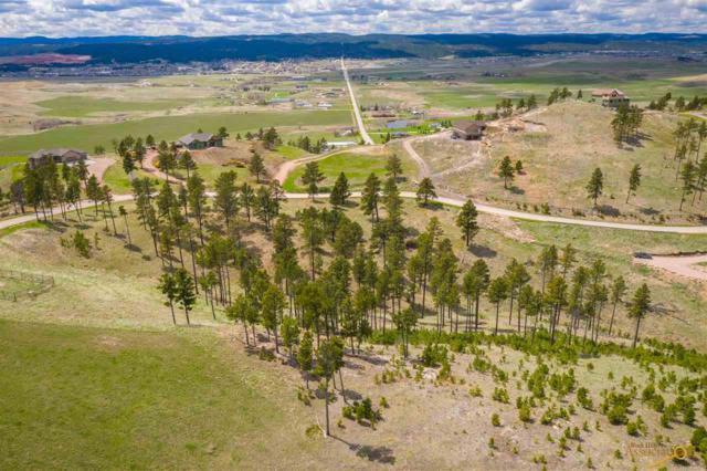 7354 Marvel Mountain Ridge Rd, Rapid City, SD 57702 (MLS #143023) :: Christians Team Real Estate, Inc.