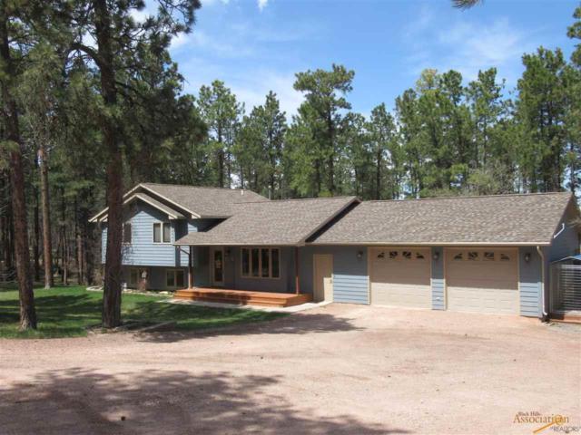 10009 S High Meadows Dr, Black Hawk, SD 57718 (MLS #143123) :: Dupont Real Estate Inc.