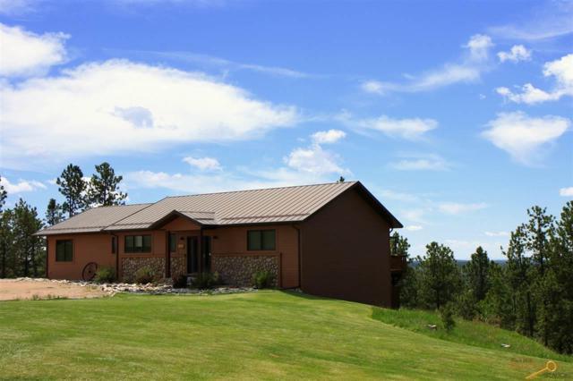 25147 Renegade Pass, Custer, SD 57730 (MLS #143592) :: Christians Team Real Estate, Inc.