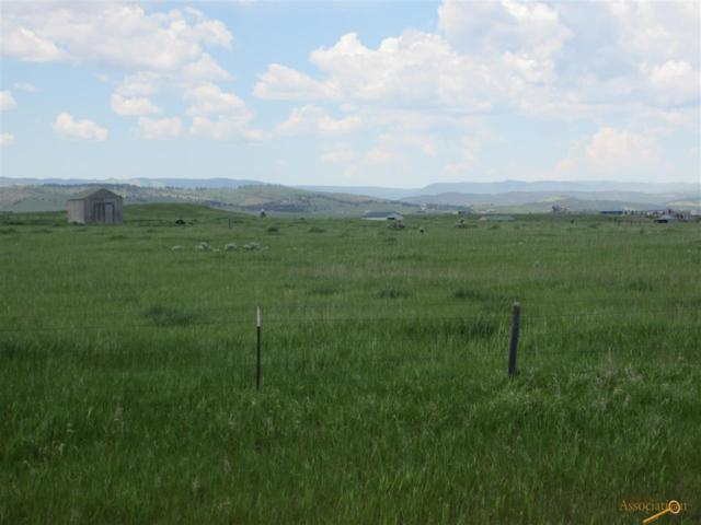 800 Peterson Rd, Rapid City, SD 57701 (MLS #143938) :: Christians Team Real Estate, Inc.