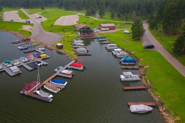 16451 Sheridan Lake Rd, Rapid City, SD 57702 (MLS #144205) :: Dupont Real Estate Inc.