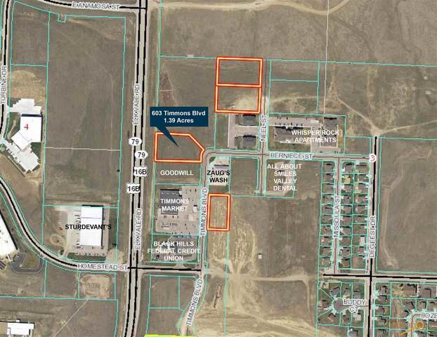 TBD Elk Vale Rd, Rapid City, SD 57703 (MLS #144308) :: VIP Properties