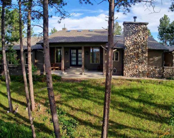 23590 Wilderness Canyon Rd, Rapid City, SD 57702 (MLS #144427) :: Christians Team Real Estate, Inc.