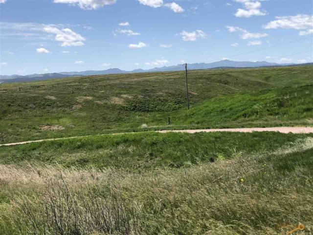 TBD Alkan Ln, Hermsoa, SD 57744 (MLS #144488) :: Christians Team Real Estate, Inc.