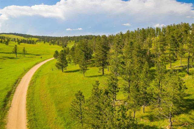 TBD Eleanor Dr, Keystone, SD 57751 (MLS #144896) :: Christians Team Real Estate, Inc.