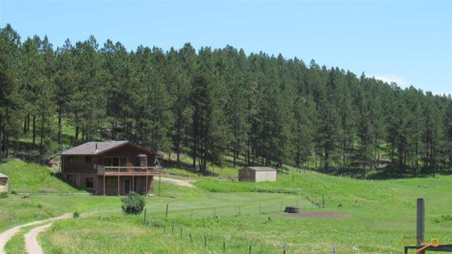 12524 Horse Creek Rd, Hill City, SD 57745 (MLS #145138) :: Christians Team Real Estate, Inc.