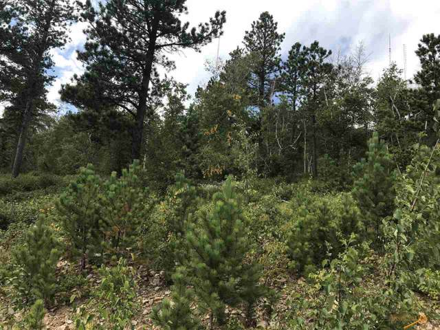 TBD Terry Peak Summit Rd, Lead, SD 57754 (MLS #145497) :: Heidrich Real Estate Team