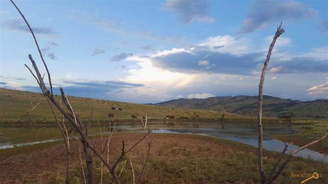 28482 Cascade Rd, Hot Springs, SD 57747 (MLS #146512) :: Dupont Real Estate Inc.