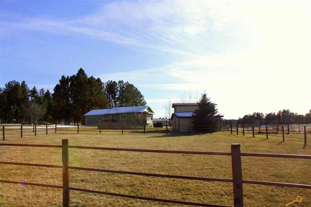 12050 Dakota Pine Rd, Custer, SD 57730 (MLS #146698) :: Christians Team Real Estate, Inc.