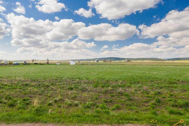 21935 Hawkins Dr, Piedmont, SD 57769 (MLS #147282) :: Dupont Real Estate Inc.