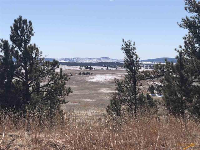 TBD Stage Stop Rd, Custer, SD 57730 (MLS #147830) :: VIP Properties