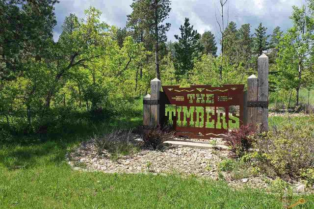 Lot 12 Finch Ct, Spearfish, SD 57783 (MLS #147938) :: Heidrich Real Estate Team