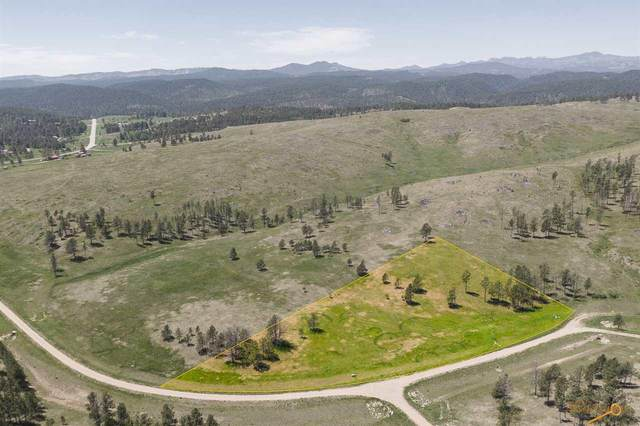 TBD Eleanor Dr, Keystone, SD 57751 (MLS #149705) :: VIP Properties