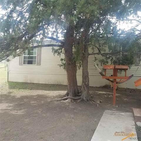 27573 Ponderosa Rd, Hot Springs, SD 57747 (MLS #149838) :: Dupont Real Estate Inc.