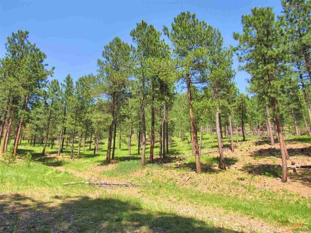 0 Silver City Rd, Silver City, SD 57702 (MLS #149885) :: Dupont Real Estate Inc.