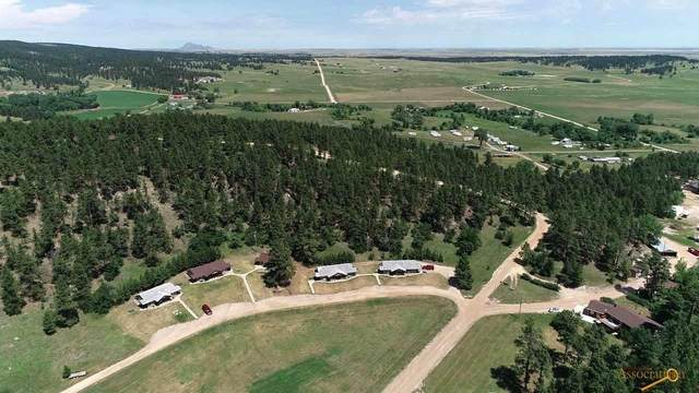 8220 Elk Creek Rd, Piedmont, SD 57769 (MLS #150374) :: Black Hills SD Realty