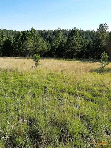 Tract 43 Calamity Ln, Pringle, SD 57747 (MLS #150817) :: Dupont Real Estate Inc.