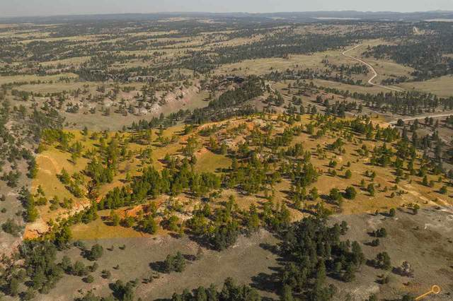Orion's Ridge 2 Elk Run Rd, Custer, SD 57730 (MLS #151158) :: Black Hills SD Realty