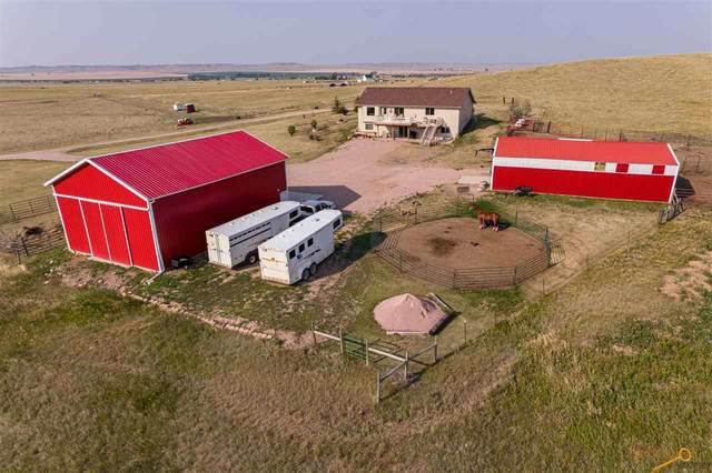 21889 Antelope Creek Rd, Box Elder, SD 57719 (MLS #154690) :: Heidrich Real Estate Team