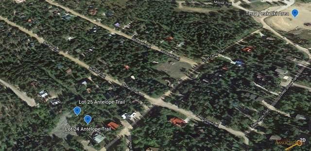 Lot 24 Antelope Tr, Lead, SD 57754 (MLS #154721) :: Heidrich Real Estate Team