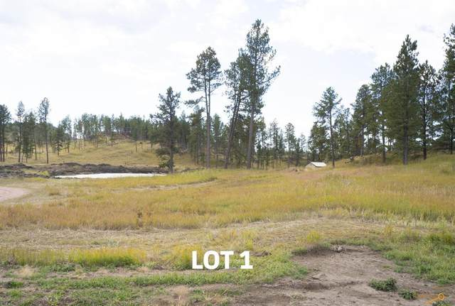 Lot 1 Other, Custer, SD 57730 (MLS #154805) :: Daneen Jacquot Kulmala & Steve Kulmala