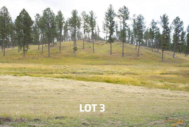 Lot 3 Other, Custer, SD 57730 (MLS #154810) :: Daneen Jacquot Kulmala & Steve Kulmala