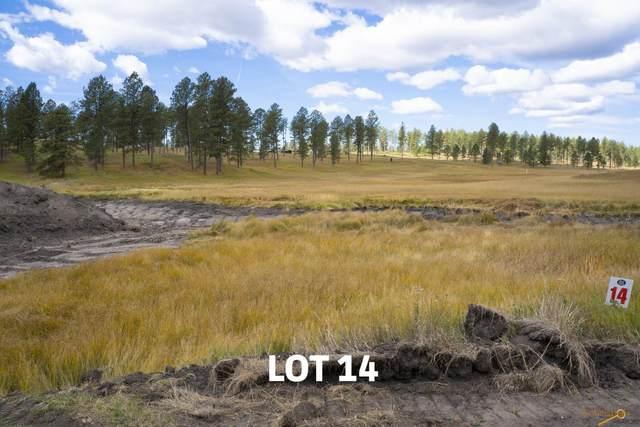 Lot 14 Other, Custer, SD 57730 (MLS #154825) :: Daneen Jacquot Kulmala & Steve Kulmala