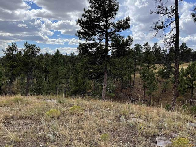 tbd Other, Hot Springs, SD 57747 (MLS #155677) :: VIP Properties
