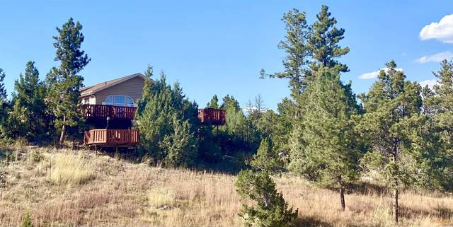 27419 Woodland Dr, Hot Springs, SD 57747 (MLS #156051) :: Christians Team Real Estate, Inc.