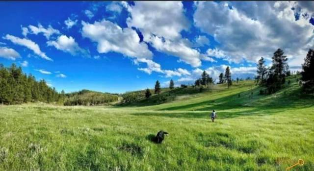 24435 Medicine Mountain Rd, Custer, SD 57730 (MLS #156252) :: Heidrich Real Estate Team